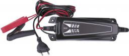 Ładowarka Emos Ładowarka samochodowa akumulatorów ołowiowych 6V/12V 1,2-120Ah (N1014)