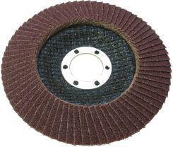Proline Tarcza ścierna listkowa 125mm gr 60 (44855)