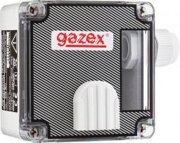 Gazex Dwuprogowy detektor tlenku węgla (DG-22.EN)