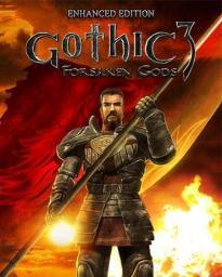 Gothic 3: Forsaken Gods - Enhanced Edition, ESD