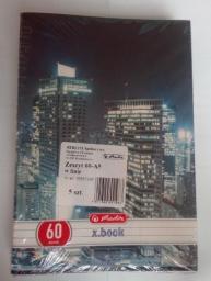 Herlitz Zeszyt A5/60k kratka City Light (5szt) (275188)