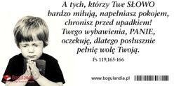 Bogulandia Magnes 21 Na Lodówkę - A Tych, Którzy Twe Słowo... (274100)
