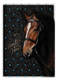 Paso Błyszczący Pamiętnik My Beautiful Horse (275305)