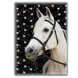 Paso Błyszczący Pamiętnik Horse 2 (275262)