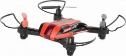 Dron Carrera Quadrocopter RC Mini Race Copter (GXP-628969)