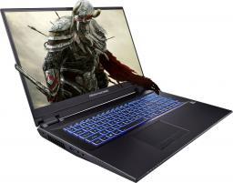 Laptop Dream Machines RT2060-17PL16