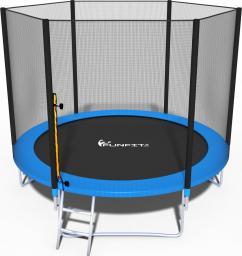 Funfit Trampolina ogrodowa dla dzieci z siatką zewnętrzną i drabinką 252cm