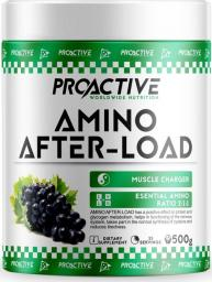ProActive Amino After Load Grape 500g