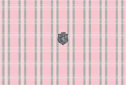 G-Cube Naklejka laptop Mad For Plaid Pink GCBSP19PP