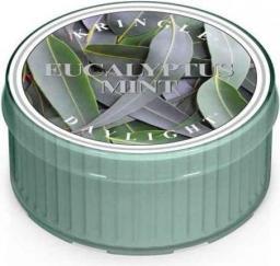 Kringle Candle Świeczka zapachowa Daylight Eucalyptus Mint 35g