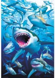 Educa Puzzle Shark club 500 elementów