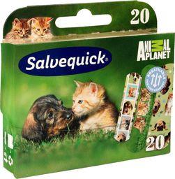 Salvequick  Salveqiuck Plastry Animal Planet dla dzieci  1op-20szt