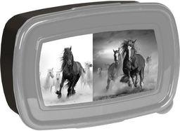 1 PASO Śniadaniówka Horse 17-3022HO