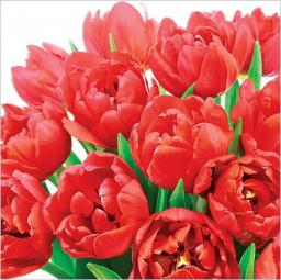 Artnuvo Karnet kwiatowy