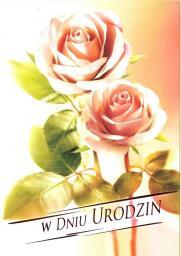 Artnuvo Karnet B6 Kwiaty W Dniu Urodzin FF1205