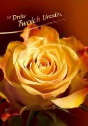Artnuvo Karnet B6 Kwiaty W Dniu Twoich Urodzin FF1220