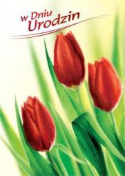 Artnuvo Karnet B6 Kwiaty W Dniu Urodzin FF1201