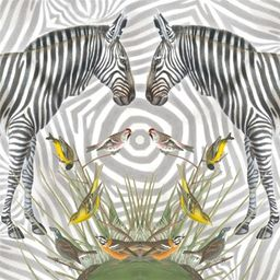 Museums & Galleries Karnet kwadrat Zebra z kopertą