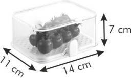Tescoma  Zdrowy pojemnik do lodówki PURITY, 14x11 cm  (891820.00)