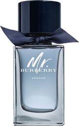 Burberry Mr.Burberry Indigo EDT 100ml
