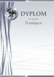 Argo Dyplom Galeria Papieru puchar srebrny A4