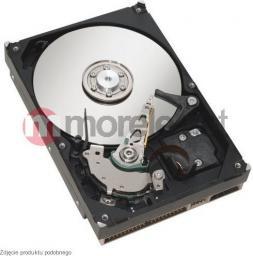 Dysk serwerowy Fujitsu S26361-F3660-L100