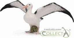 Figurka Collecta Albatros Wędrowny