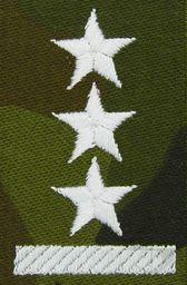 Sortmund Stopień do furażerki polowej - porucznik