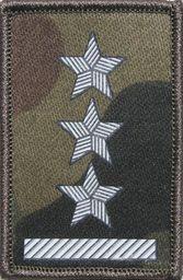Sortmund Stopień (termonadruk) do czapki kepi Straży Granicznej - porucznik