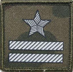 Sortmund Stopień (termonadruk) do czapki kepi Straży Granicznej - major
