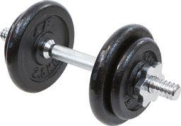 Victoria Sport zestaw hantli żeliwnych  4x2.5 kg EB Fit