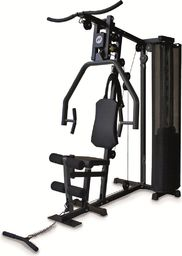 Horizon Fitness Atlas treningowy Torus 1 czarny