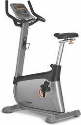 JOHNSON HEALTH TECH. CO. LTD Rower Pionowy Elite U4000 (100691)