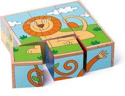 Woodyland Puzzle sześcienne kostki zwierzęta egzotyczne