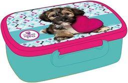 1 Beniamin Pojemnik na śniadanie Sweet Pets - Pies