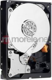 """Dysk Western Digital AV-GP 500 GB 3.5"""" SATA II (WD5000AVCS)"""