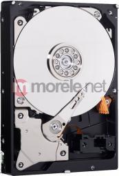 Dysk Western Digital Black, 3.5'', 500GB, SATA/600, 7200RPM, 64MB cache (WD5003AZEX)
