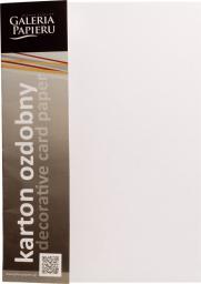 Argo Papier Karton Ozdobny A4 Floryda Standard Biały 20k