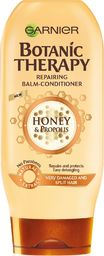 Garnier Botanic Therapy Honey 200 ml