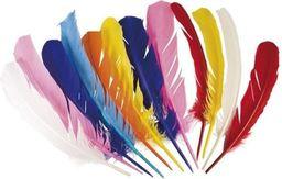 Aster Kolorowe pióra - cena za sztukę