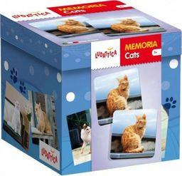 Lisciani Ludattica Memoria Fauna Cats