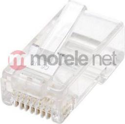 Intellinet Network Solutions Wtyk RJ45 Cat6 502344