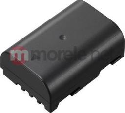 Akumulator Panasonic DMW-BLF19E