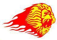 Windowsticker Naklejka na okno Lion 001 - żółto-czerwona (14)