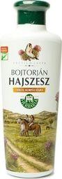 Banfi BANFI_Herbaria Bojtorjan Hajszesz wcierka do skóry głowy z ekstraktem z Łopianu 250ml