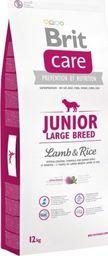 Brit Karma dla psa Care z jagnięciną i ryżem 12 kg