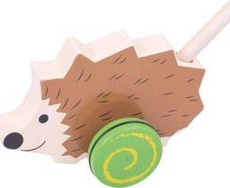 BigJigs Drewniana Zabawka do pchania do zabawy dla dzieci - Jeż uniw