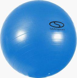 SMJ sport Piłka gimnastyczna SMJ GB-S 1105 55cm uniwersalny