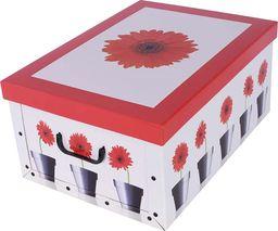 Miss Space Pudełko kartonowe MINI DONICZKI-GERBERY uniwersalny