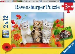 Ravensburger Puzzle 2x12 elementów - Koty, Przygoda